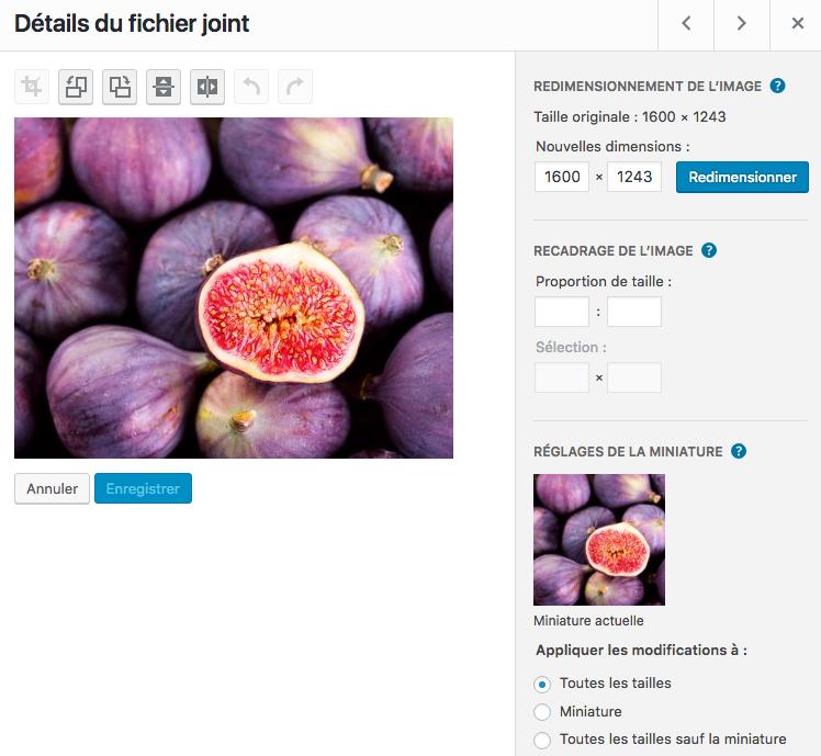 Un avantage de WordPress : la retouche d'image