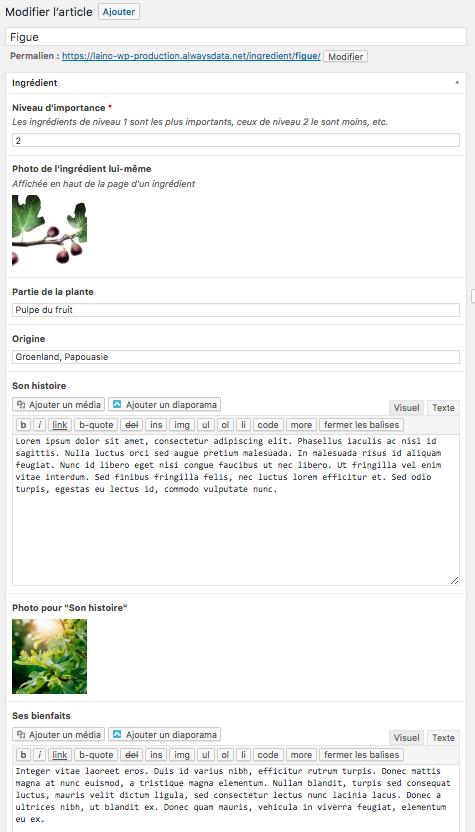 WordPress permet de définir des contenus et champs personnalisés