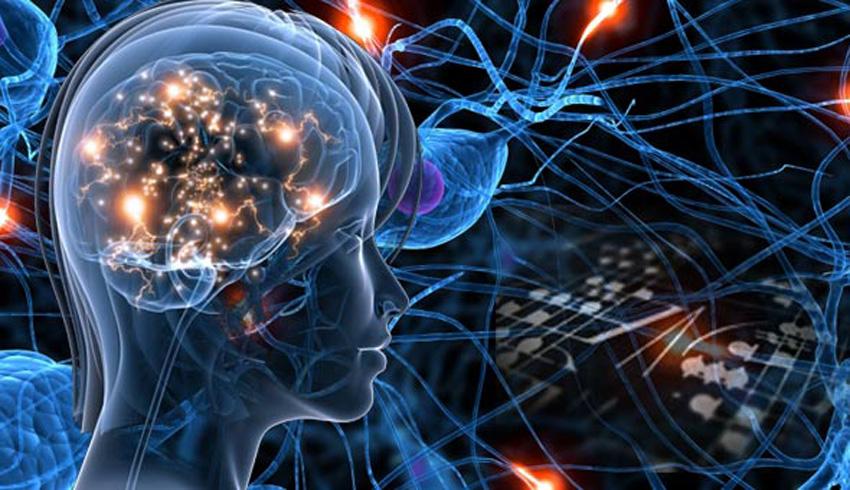 Ilustration de réseau de neurones biologique par kerja otak
