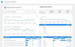 Rapport Google Search Console