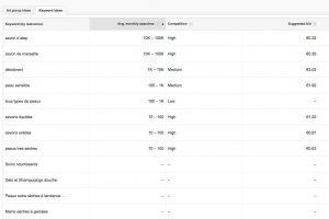 Google Keyword Planner : résultats pour Laino