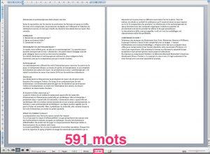 Microsoft Word : compter le nombre de mots